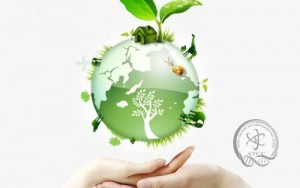 Thuốc bảo vệ thực vật - ảnh hưởng sức khỏe con người và môi trường; nguyên tắc sử dụng an toàn